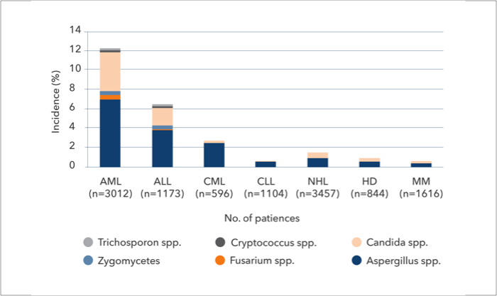 Distribution of IFIs in patients with haematological malignancies